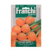 Carrot Parisier