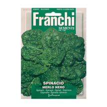 Spinach Merlo Nero