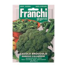 Broccoli of Calabria