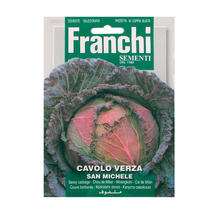 Savoy Cabbage San Michele