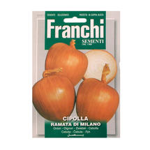 Onion Ramata of Milano