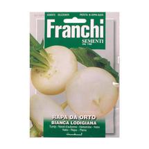 Turnip of Lodi White