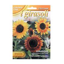 Mixed Sunflower Seeds