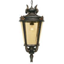 Baltimore Outdoor Hanging Lantern - Medium